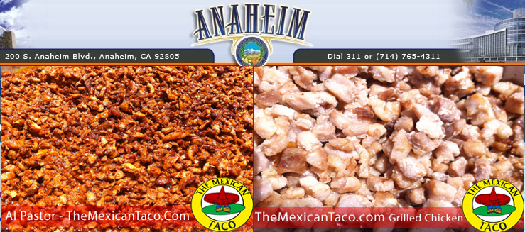 Taco Catering Anaheim California   The Mexican Taco Catering